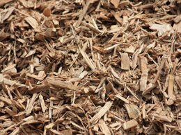 Wood Chips_sized