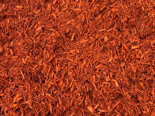 Bright-Red-Mulch